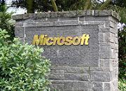 Microsoft si Google Ecologizare